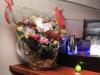 2011-11-11_jabras_214